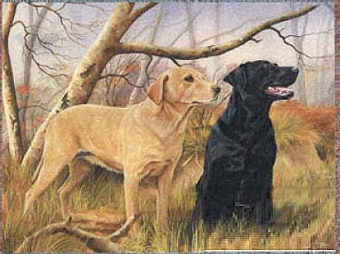 Black dog and yellow dog
